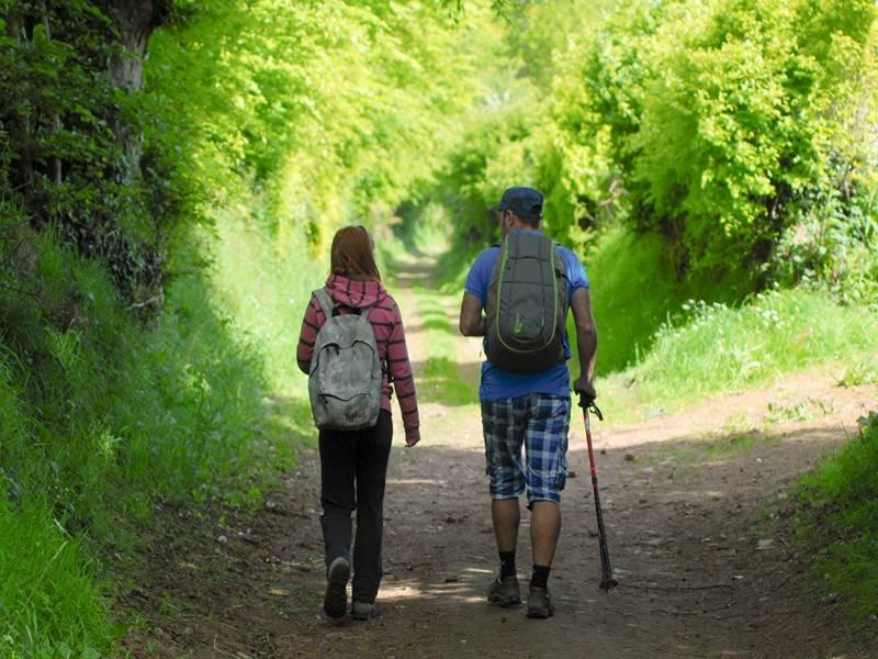 Randonnée pédestre à Saint-Martin-des-Besaces