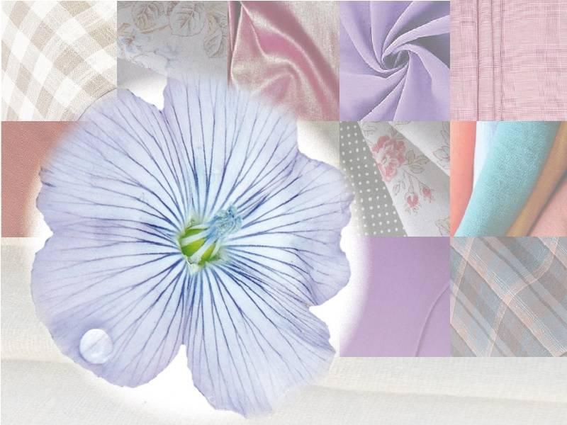 Exposition : Couleur lin, couleur nature (11ème édition)