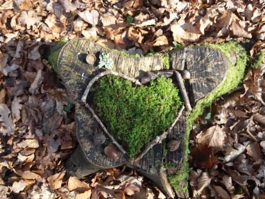 Activité enfants : Land-Art dans la forêt