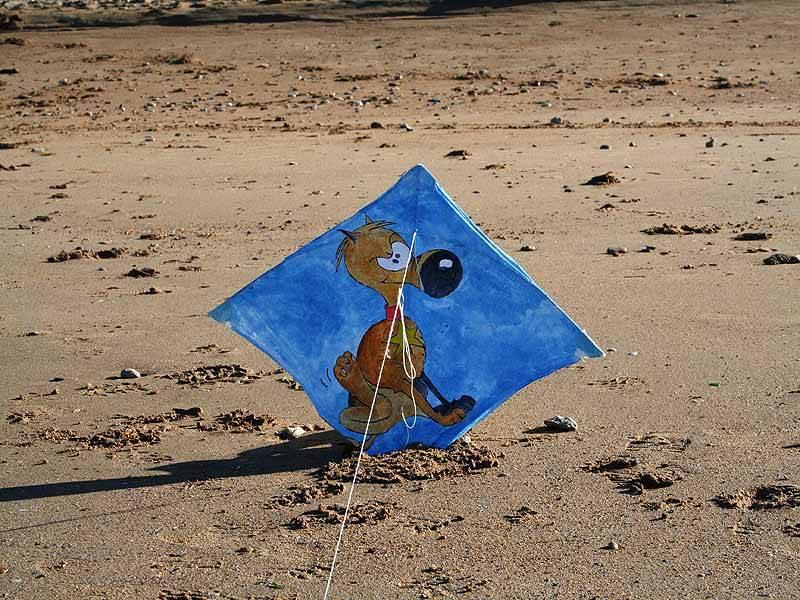 Balade découverte sur la plage d'Hermanville