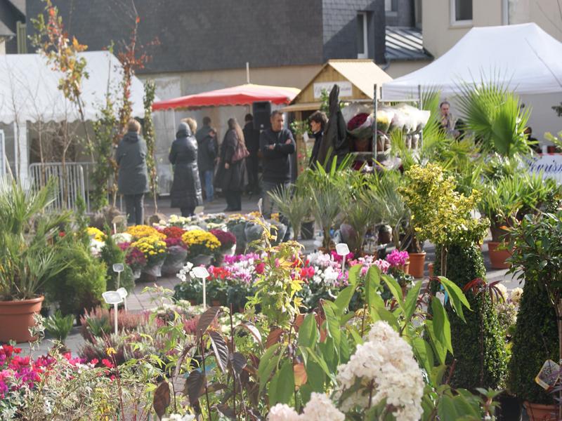 Jardins et Terroir en fête ! 9ème édition