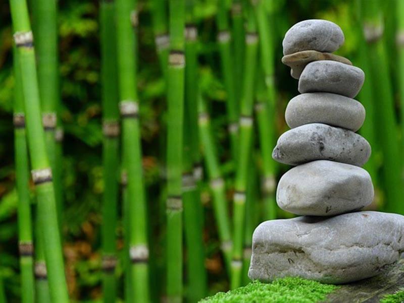 Découverte de la sophrologie-relaxation