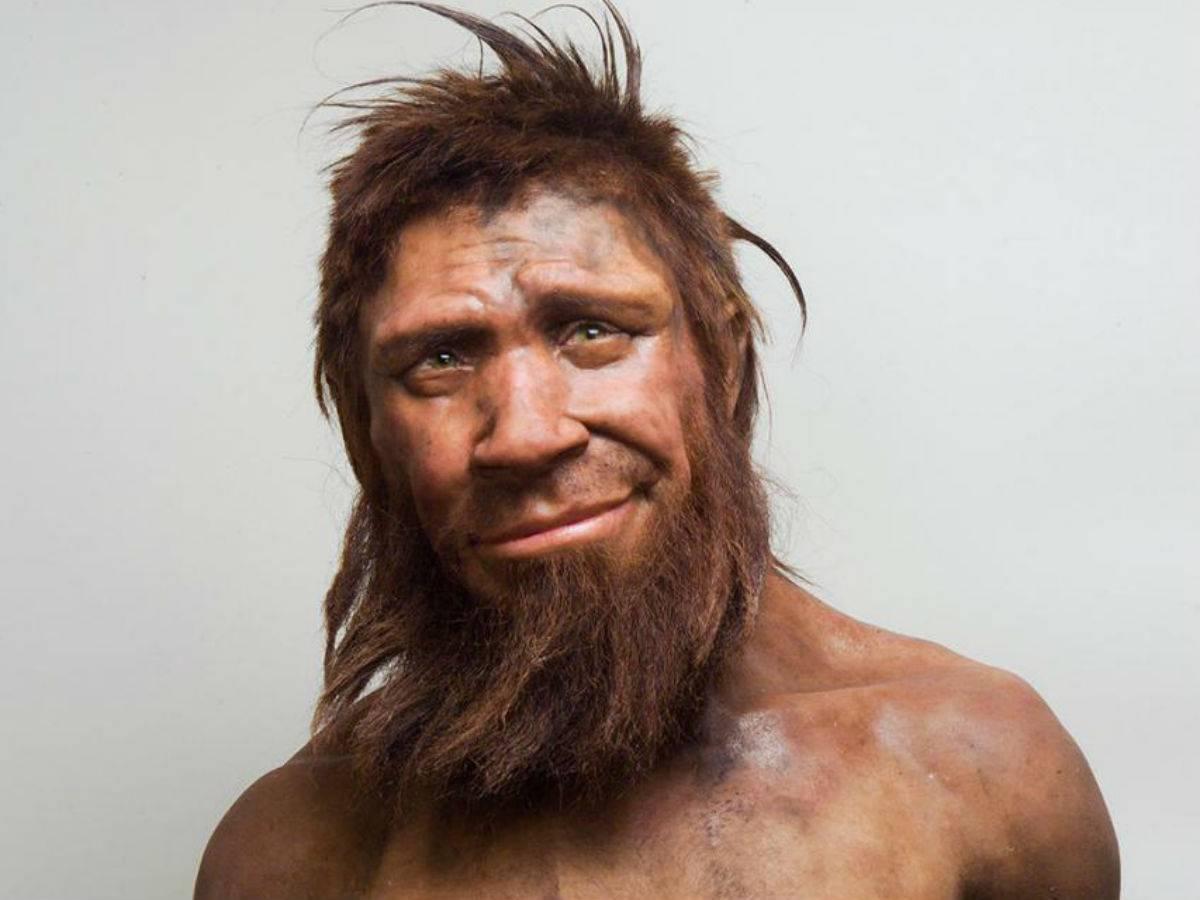Néandertal : Le véritable