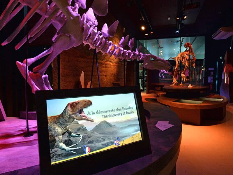 Dinosaures de Normandie