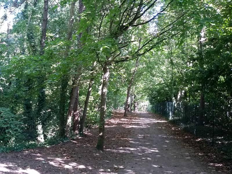 Balade botanique dans le parc du Biez à Mondeville